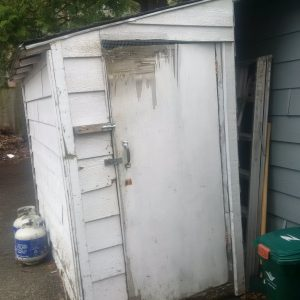 Old white shed with peeling painted door